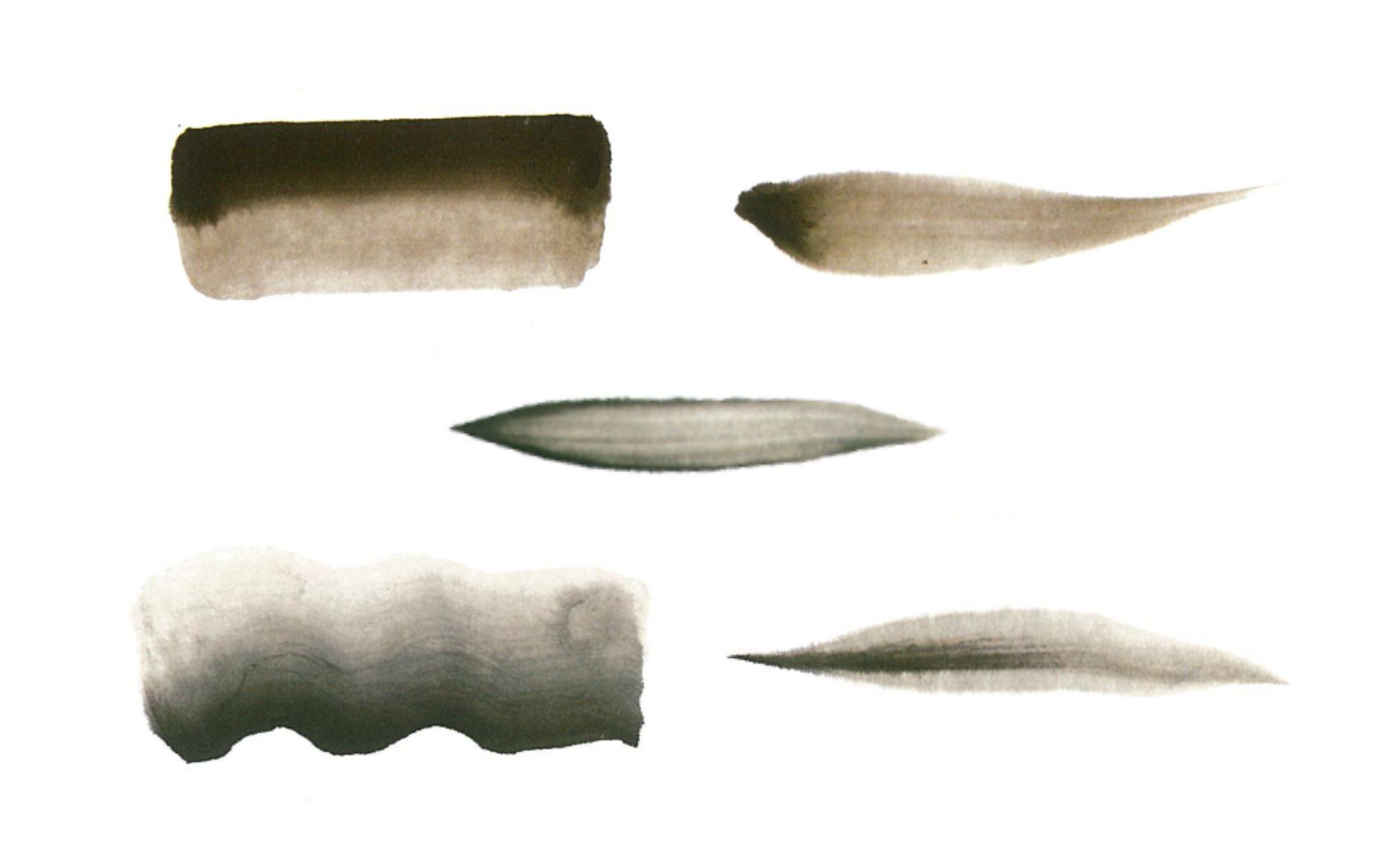 100日後に墨絵が上達する柴犬 ~5つの墨技法~Five techniques in Sumi-e